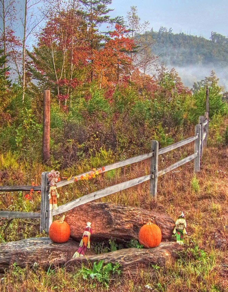 Otter Creek Valley Fall Pumpkins
