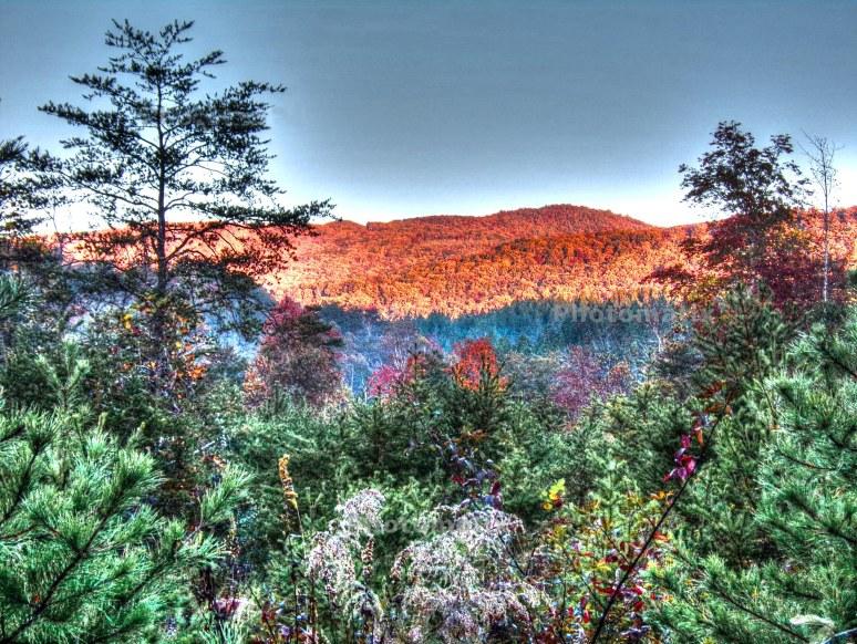 Bear Gap Mountain Rays