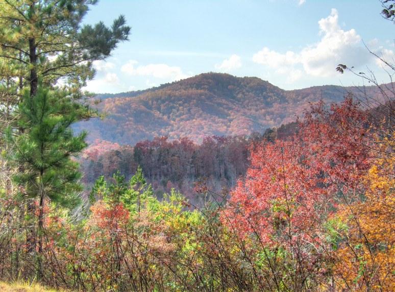 Horsetop Mountain Vista