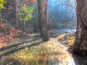 Otter Creek Branch