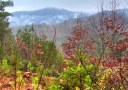 Toan Horsetop Mountain Fog