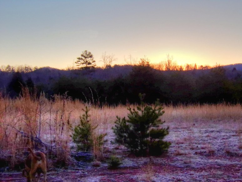 Otter Creek Sunrise