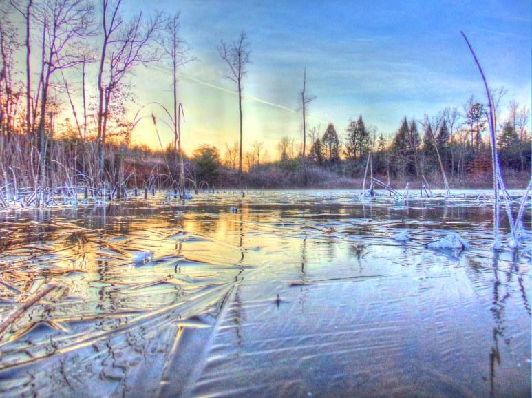 Otter Pond Ice Sheet