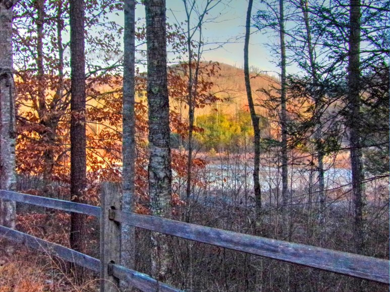 Otter Pond Fence