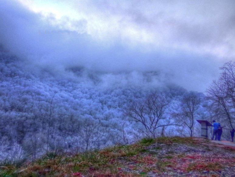 Great Smokies Snow at Twilight