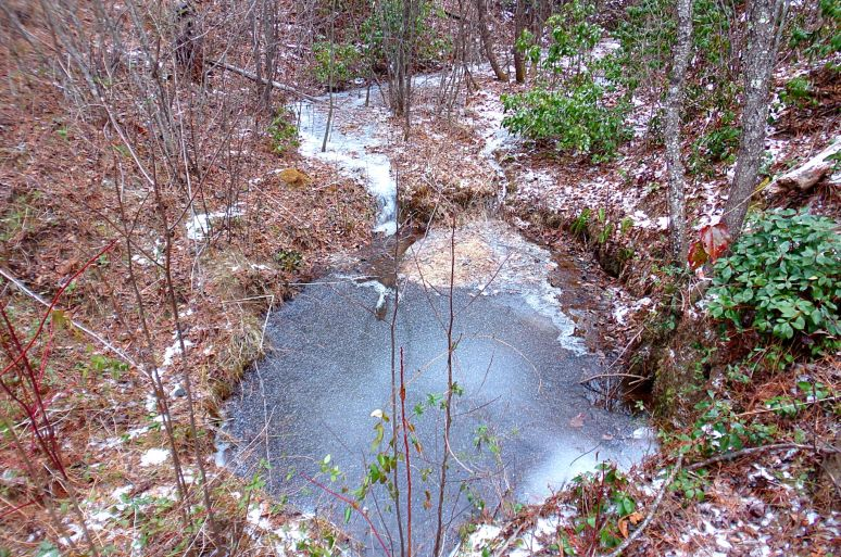 High Lodges Stream in Ice