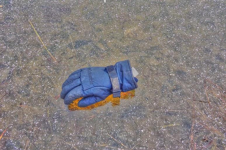 High Lodges Pond Ice Glove