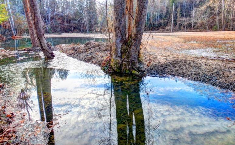 Pond Ice along Otter Creek