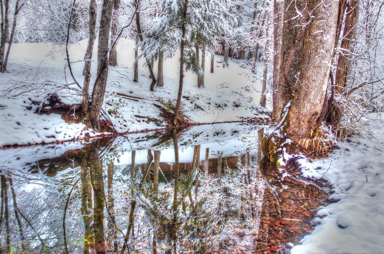 Otter Creek Snow Reflections