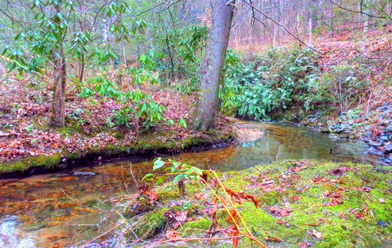 Otter Creek Bend