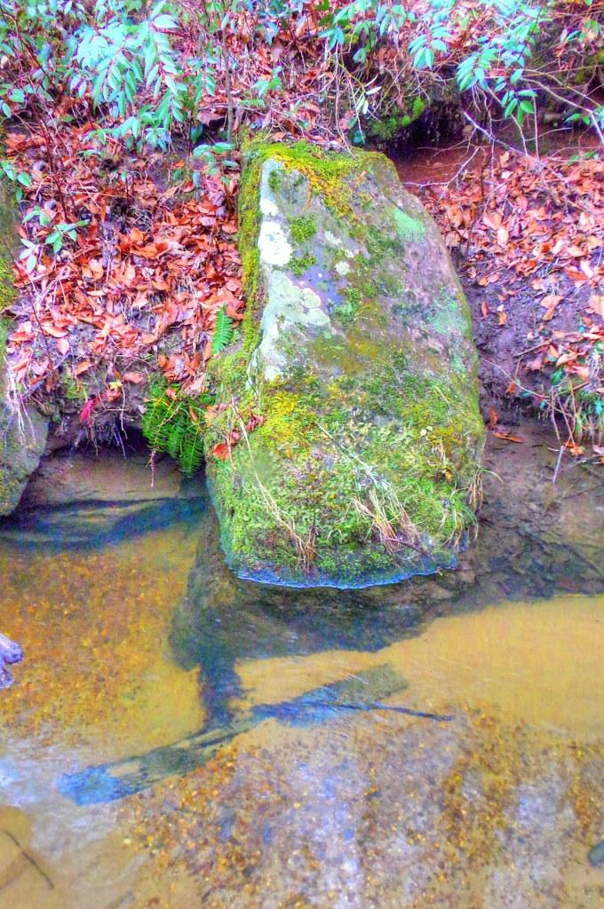 Otter Creek Gorge 4
