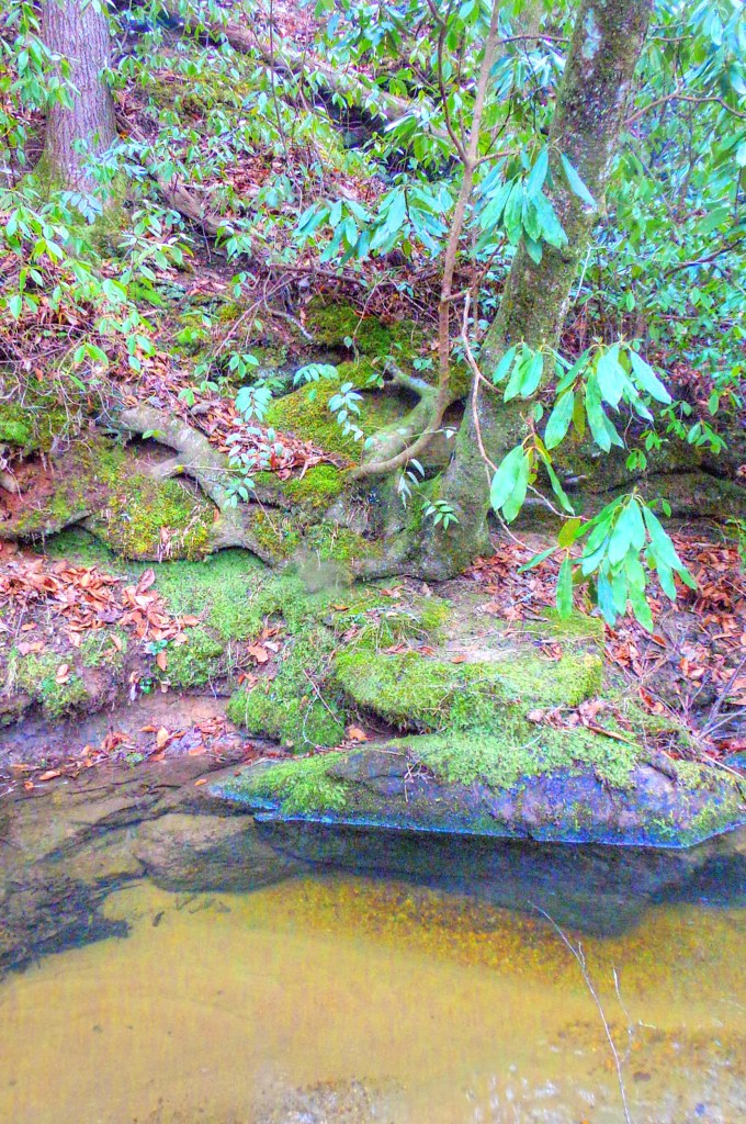 Otter Creek Gorge 5