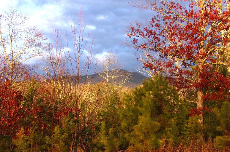 Horsetop Mountain at Sunrise