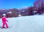 Sugar Mountain SnowBunny