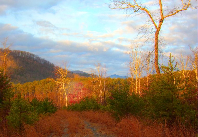 Mount Shumont from Otter Creek Valley