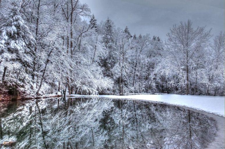 Snow Pond at Otter Creek