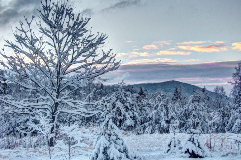 Toward Toms Mountain