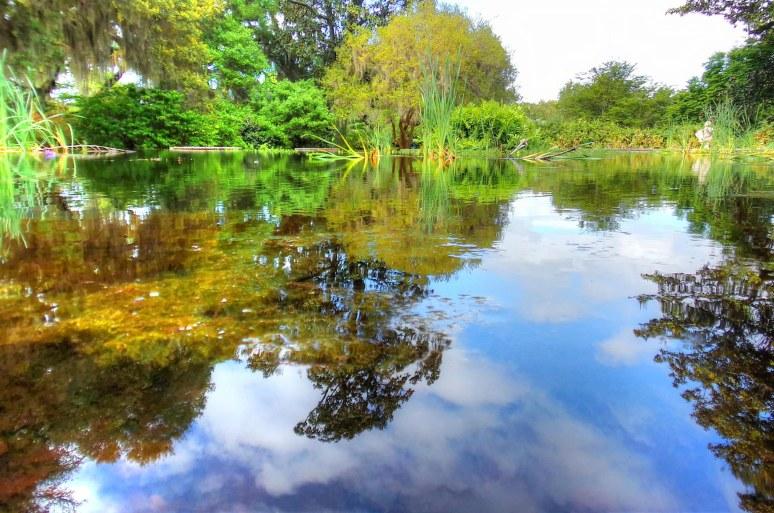 Brookgreen Pond