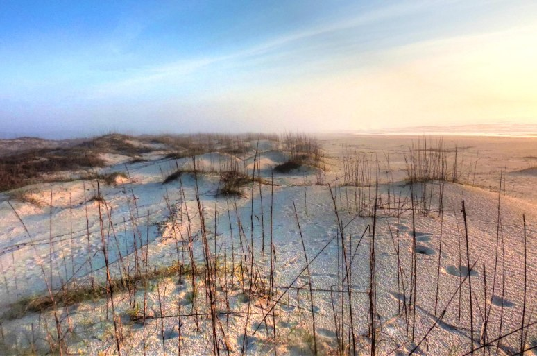 Cumberland Island Dunes at Sunrise