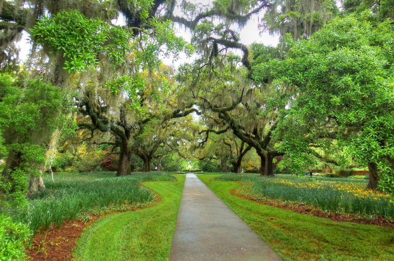 Brookgreen gardens at myrtle beach living in the blue ridge mountains of north carolina a blog for Brookgreen gardens south carolina