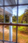 Plum Orchard Window