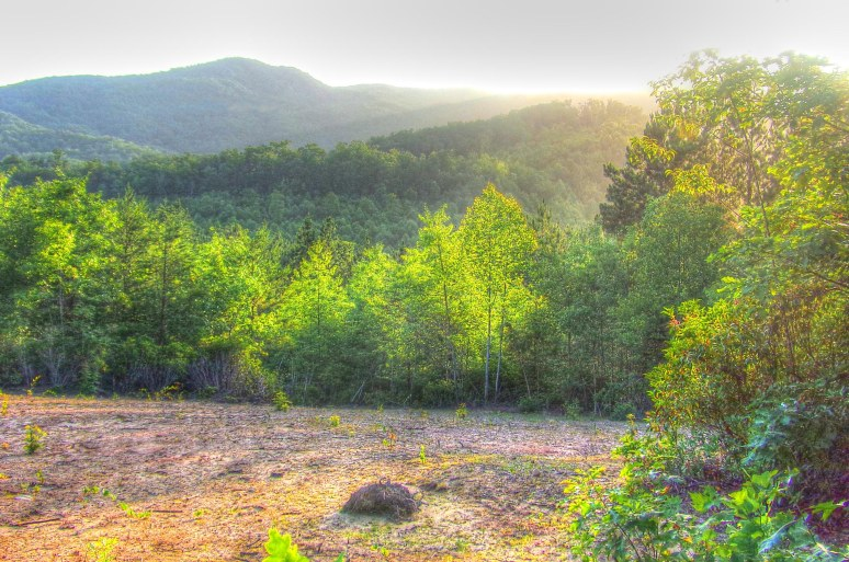 Roan Horsetop Mountain at sunset