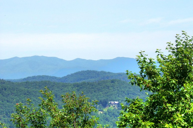 Black Mountains from Young's Mountain