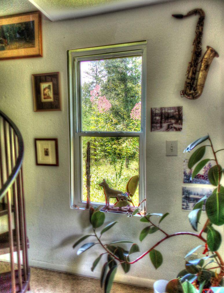 Joe Pye Window