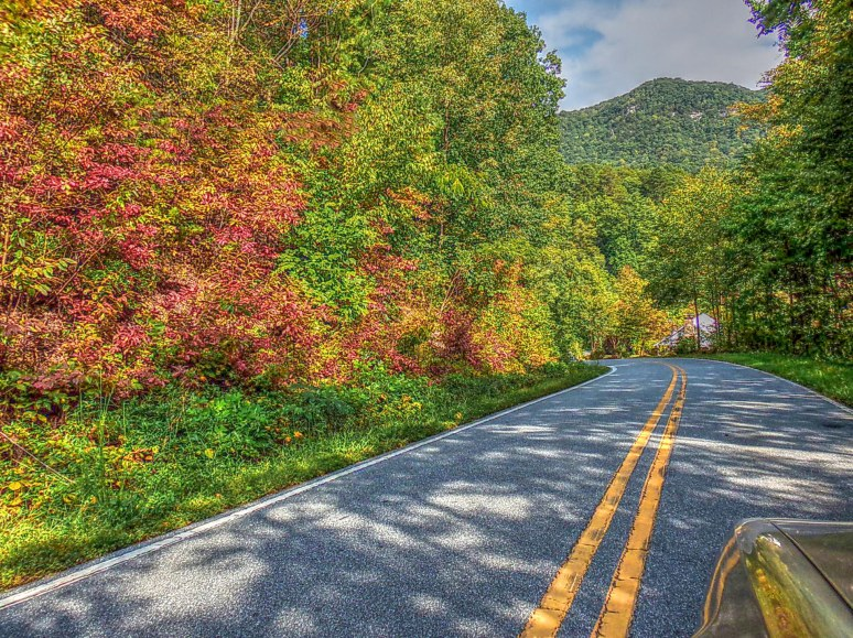 Cedar Creek Autumn Road