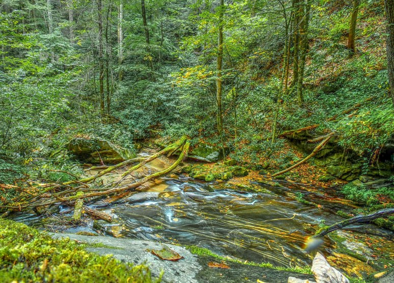 Cedar Creek Gorge Grotto