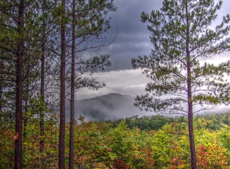 Roan Horsetop Mountain Clouds