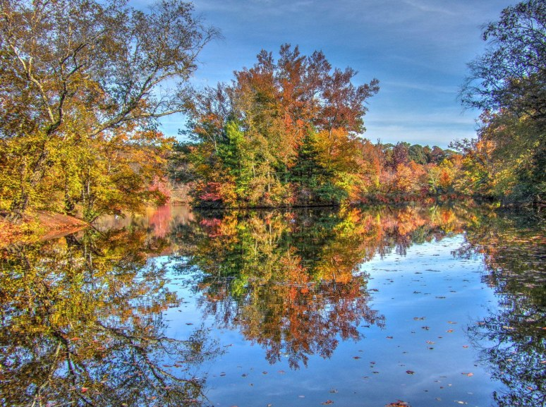 Biltmore Island Reflections