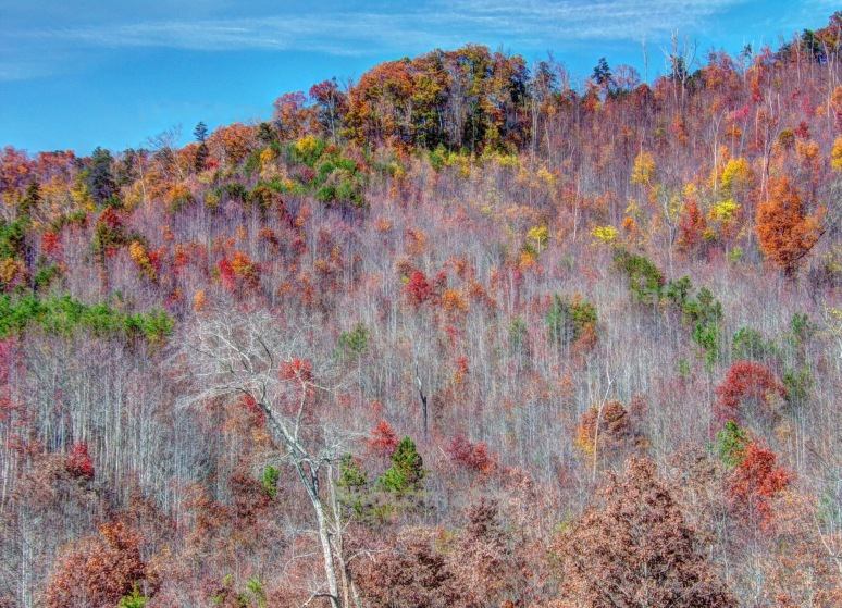 Bear Gap Autumn