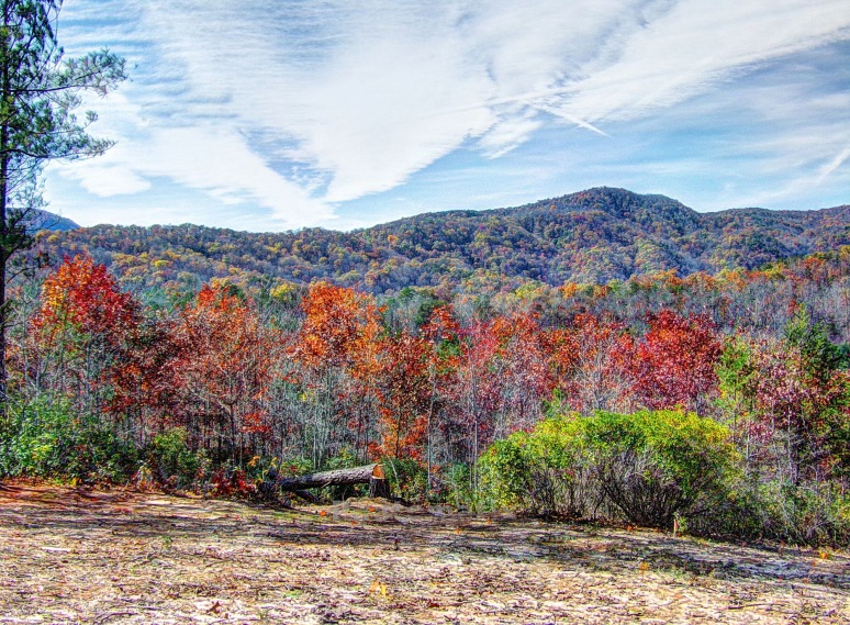 Horsetop Mountain Autumn Color