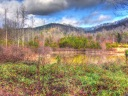 Otter Pond Under Oak Mountain