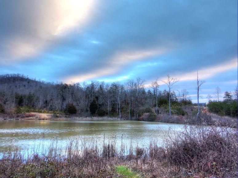 Otter Pond 7