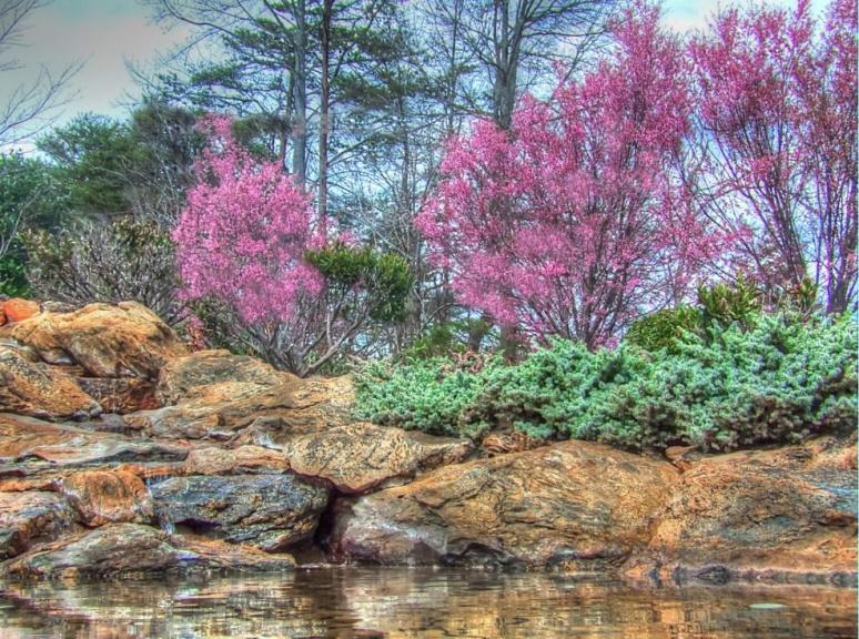 Pink Rocks 2