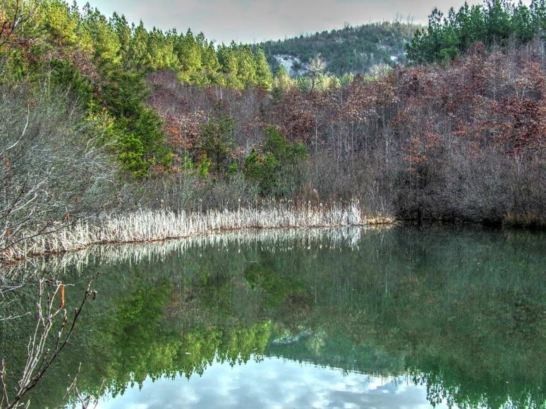 Pond 3_tonemapped