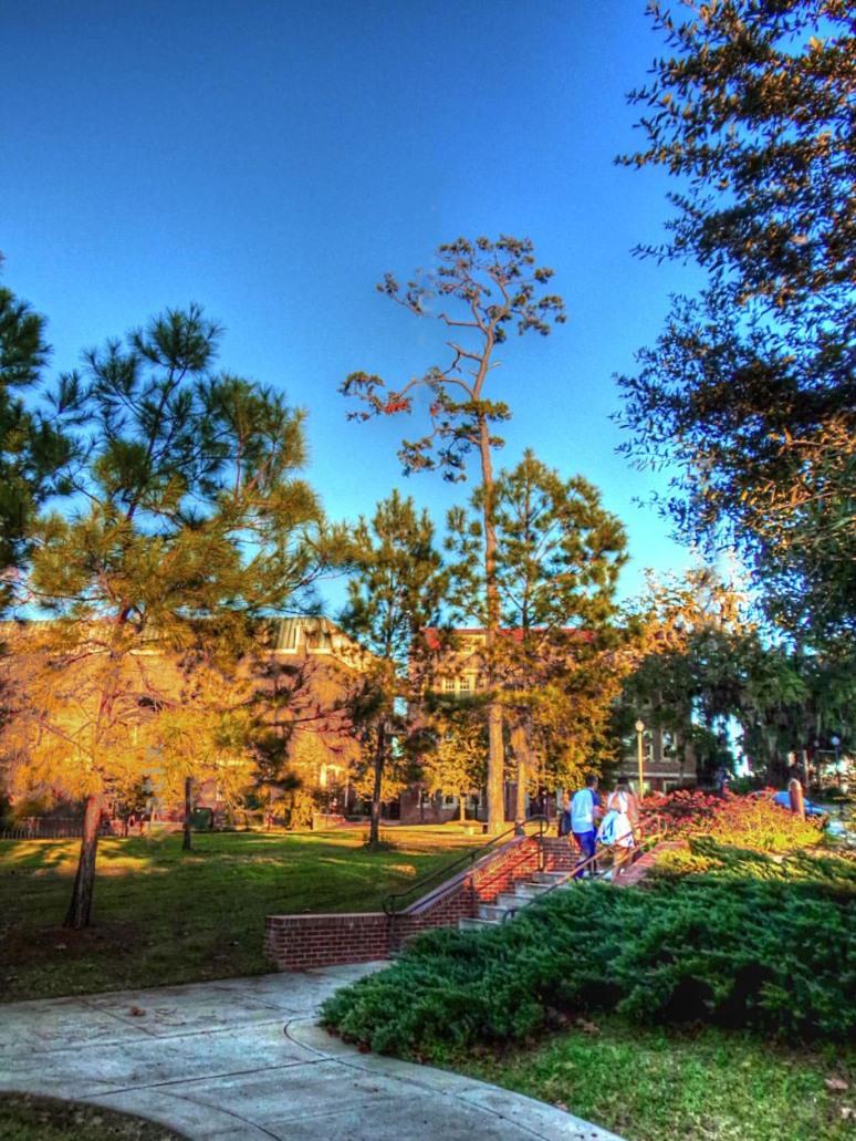 florida-state-campus