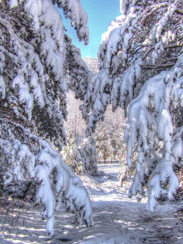 snow-tunnel