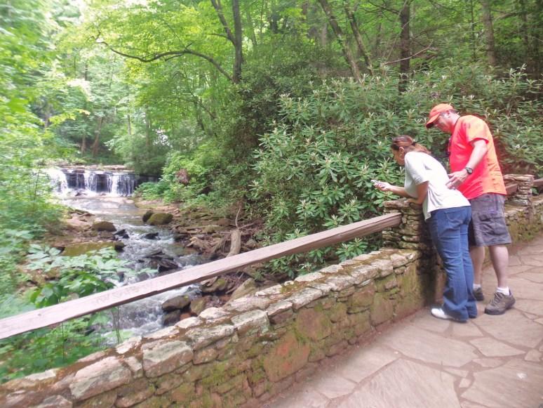Pearson's Falls Stone Bridge