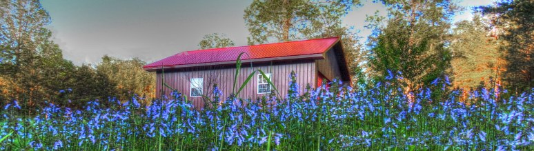 blue barn 2