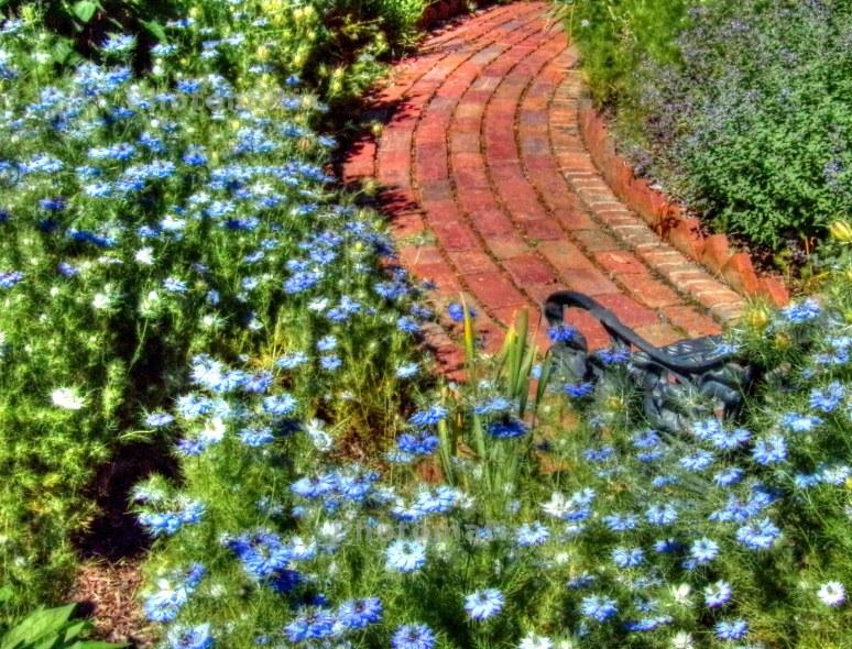 Biltmore Gardens Brick path