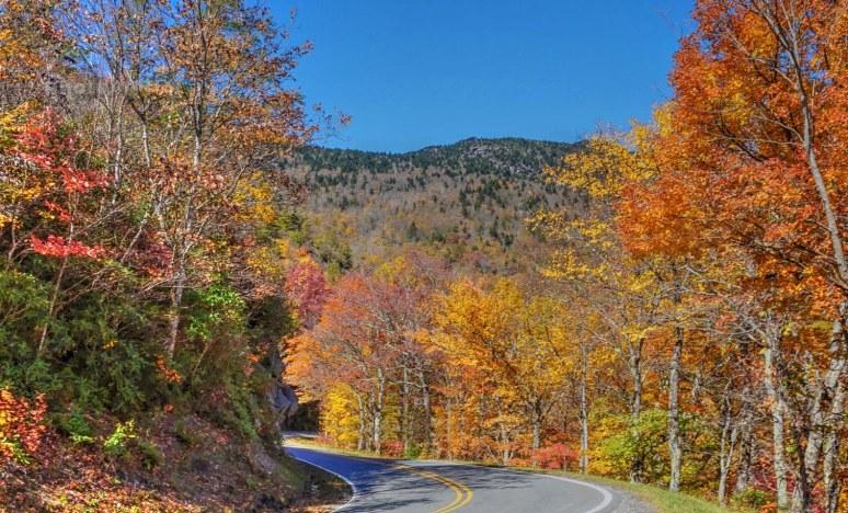 US 221 Grandfather Mountain Autumn