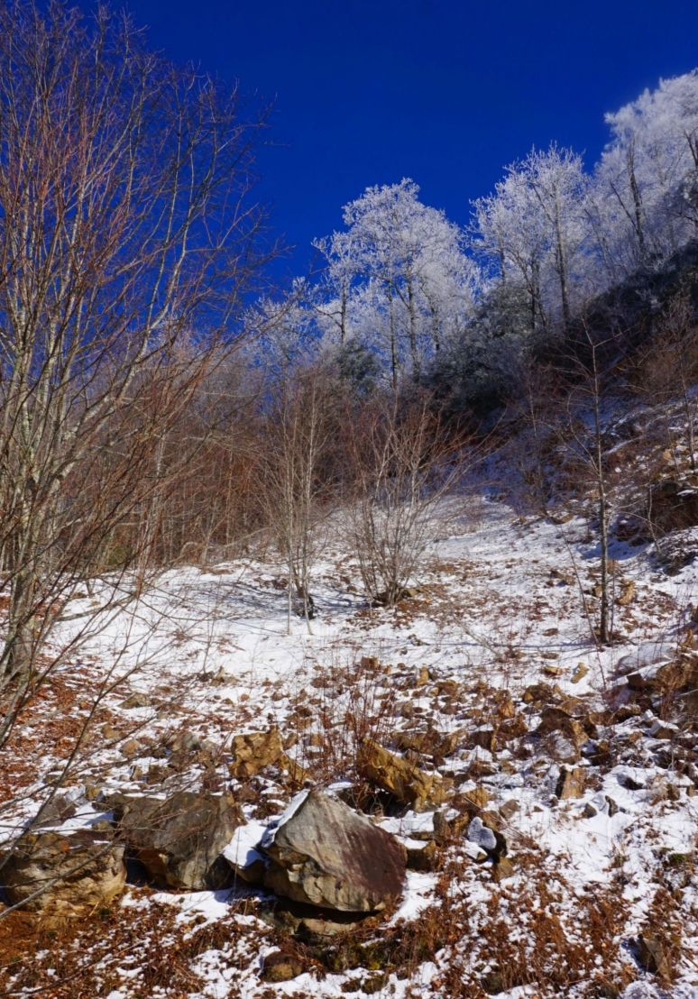 Sugar Mountain Snow and rocks