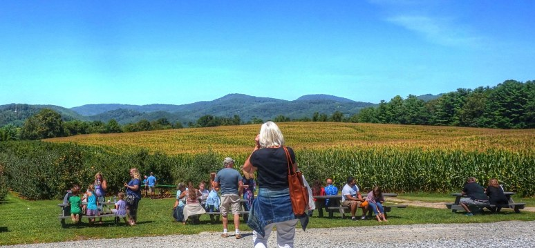 Apple Valley North Carolina Grandad's Orchard
