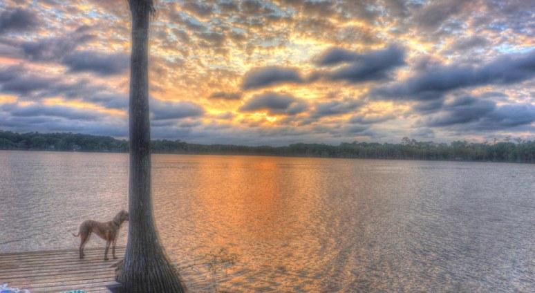 Lake Bradford 1