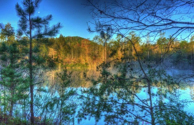 Otter Pond 1