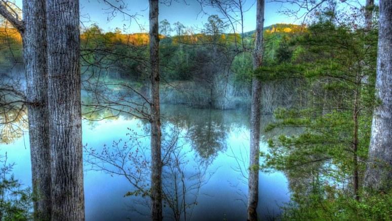 Otter Pond 2
