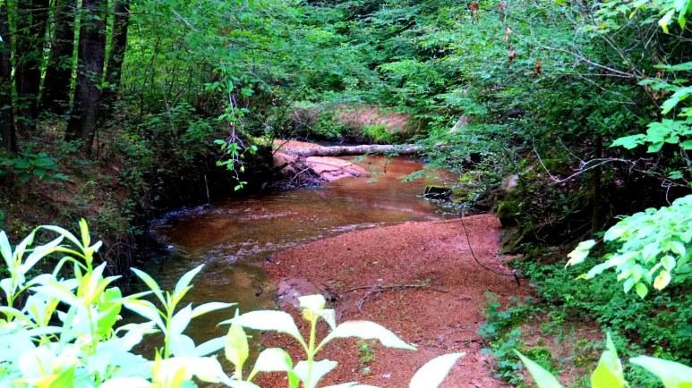 creek log